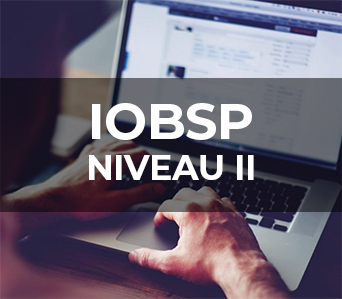 IOBSP NIVEAU 2 <span class='timing-course'>– 80h</span>